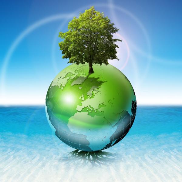 Respect De L Environnement